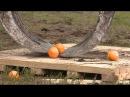 В Липином Бору операторы гидроманипуляторов играли в апельсиновый баскетбол