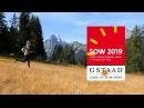 Swiss O Week 2019