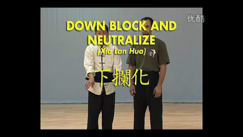白鹤拳 2 White crane fist