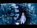 蟲師 ~蟲の音 終章~ in 雨の道 作業用 睡眠用BGM 蟲師続章OST Mushishi OST