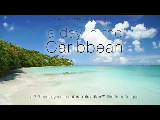 A Day in the Caribbean UHD 3.5 HOUR Dynamic 4K Nature Relaxation™ Film - Antigua (No Music)