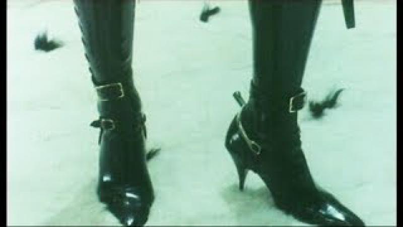 Dressing For Pleasure 1977