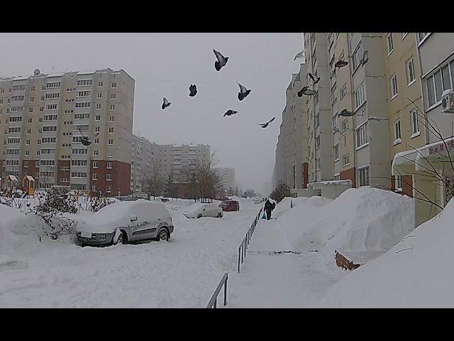 A snowy walk to Lenta in Novosibirsk -- Снежное прогулка к Лента в Новосибирске