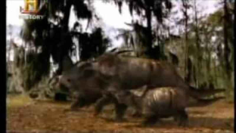 Luta Jurassica: Armagedom Parte 5 / 5 (Portugues BR)