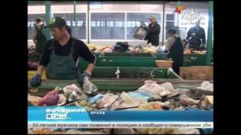 В Сочи среди мусора обнаружен труп ребенка