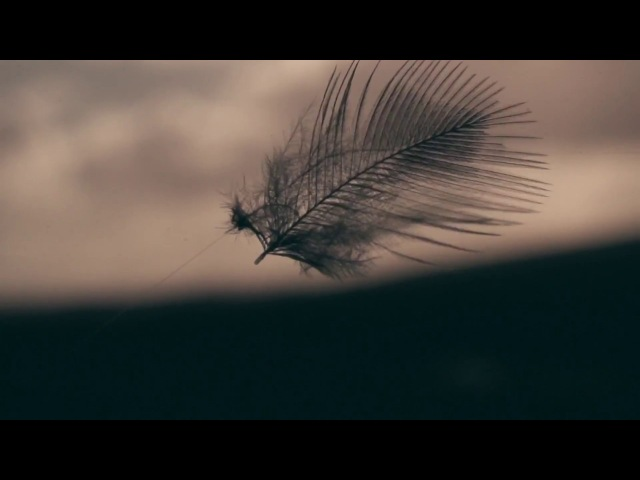 Erland Cooper - Solan Goose (Official Music Video)