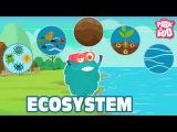 ECOSYSTEM - The Dr. Binocs Show  Best Learning Videos For Kids  Peekaboo Kidz