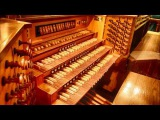Johann Sebastian Bach - Toccata in D Minor (music video)