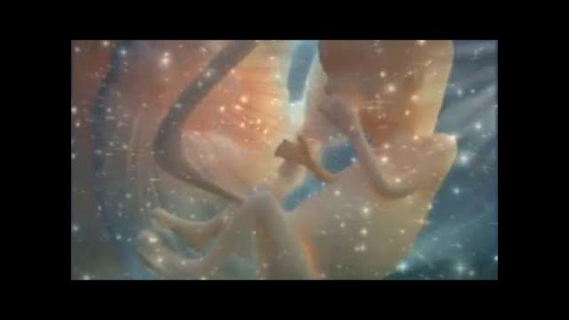Человек Земля Вселенная People The Earth The Universe 人と地球には宇宙の космос space スペース