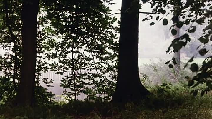 Контракт рисовальщика / The Draughtsman's Contract (1982) IMDb: 7.30