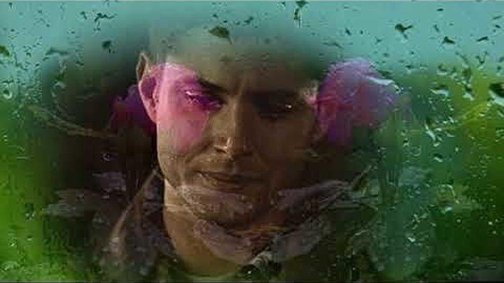 Батя, я не плачу - это дождь идет....Очень трогательно,до глубины души