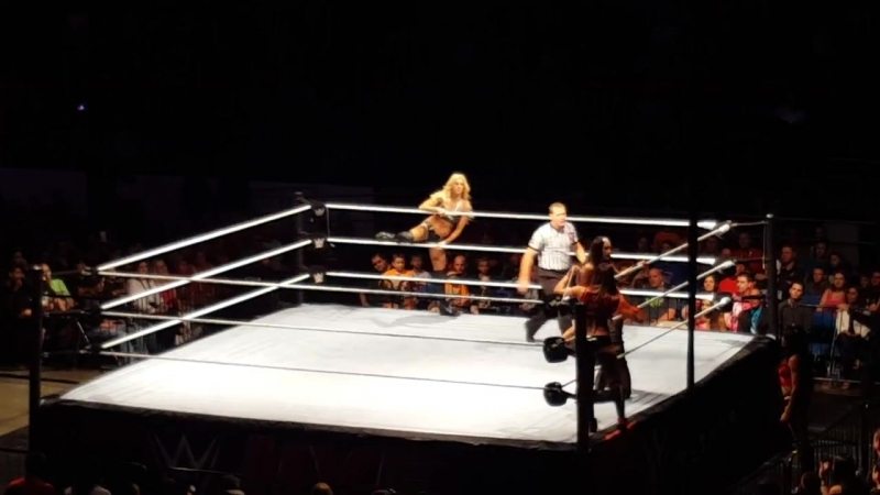 Charlotte and Becky Lynch Vs The Bella twins