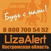 """Поисковый отряд """"Лиза Алерт"""" Кострома"""