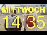 СТЫД: Германия / DRUCK (1 сезон 1 серия)