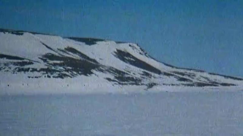 Жизнь в диких местах Арктика (2011)