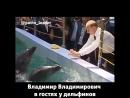 Владимир Путин в гостях у дельфинов