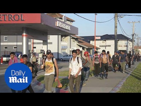 Hundreds of migrants march toward Hungary border in protest Daily Mail
