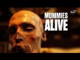 Ожившие мумии 1 серия Погребенные в болоте