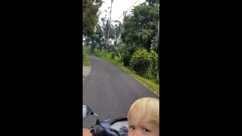 Едем к другу на мопеде на север Бали