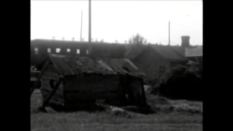 В кадре Ленинград и Москва. Путешествие в СССР. Забытые детали прошлой жизни.