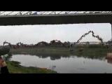 245 человек вместе прыгают с моста
