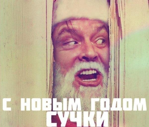 Дмитрий Лимонов, Новосибирск - фото №3