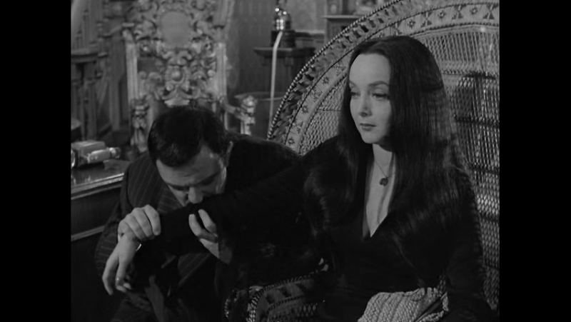 The.Addams.Family.(1964).S01E19.The.Addams.Family.Splurges.DVDRip.XviD-N-(RUS)_(from_www.FTP85.ru)