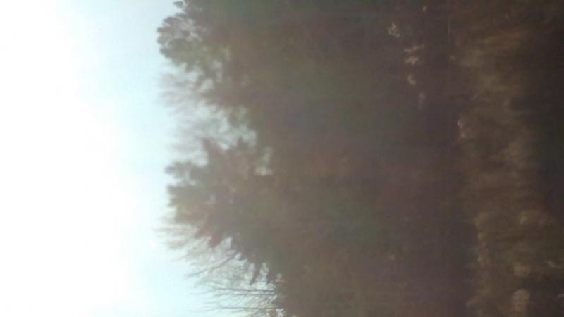 Сгорание в атмосфере неизвестного объекта Веселоярск Горняк