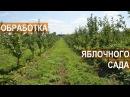 Фермер Василе Берзой. Обработка яблоневого сада от заболеваний и вредителей
