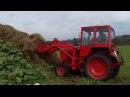 Сельскохозяйственная техника Трактор Т 25