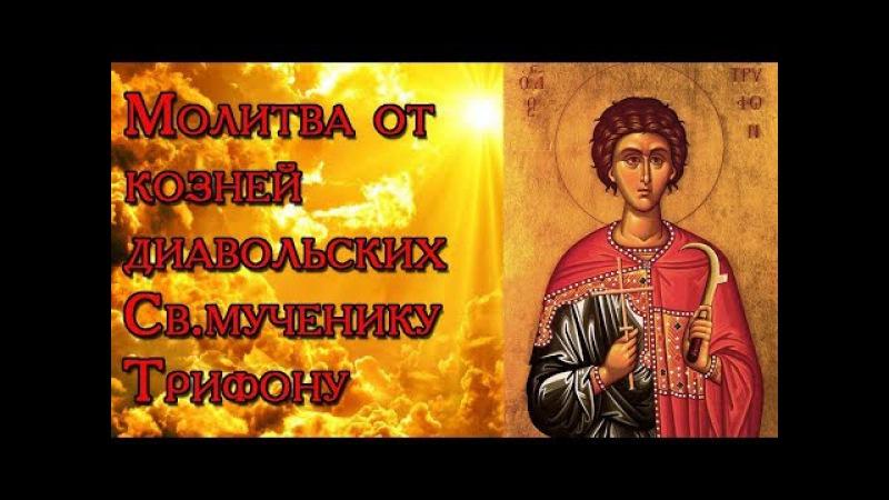 Молитва от козней диавольских Св. мученику Трифону