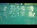 Центр Капелька аквааэробика для беременных.