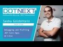 Sasha Goldshtein Debugging and Profiling NET Core Apps on Linux