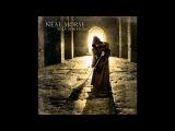 Neal Morse - Heaven in my heart