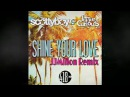 Scotty Boy and Lizzie Curious - Shine Your Love JJMillon Breakbeat Remix
