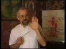 Курс массажа С. В. Дубровского (1997)