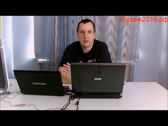 Розыгрыш призов к двухлетию канала Кролик2016.рф