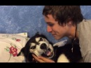Siberian Husky, Tala, Doesnt want a Kiss