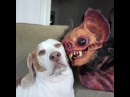 """Artistic Network on Instagram: """"@maymothedog - sometimes friendships can come outta nowhere and it's kinda created by @"""