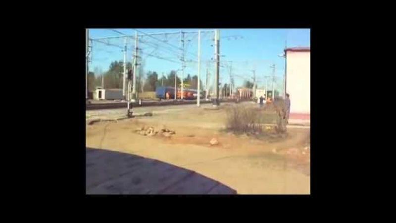 Москва - Питер! Сапсан несётся со скоростью 250км/ч, а тётка показывает ему красный кружок :)