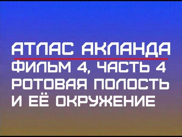 Фильм 4, Часть 4 Ротовая полость и ее окружение Атлас Акланда