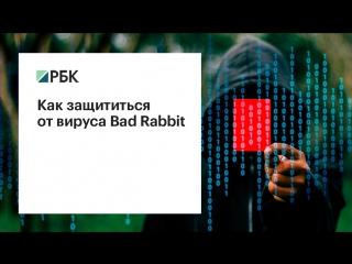 Как защититься от вируса Bad Rabbit