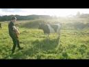 Серый кит - Корова комедийная экспромт-версия