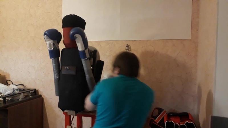 Коконбот робот для битья