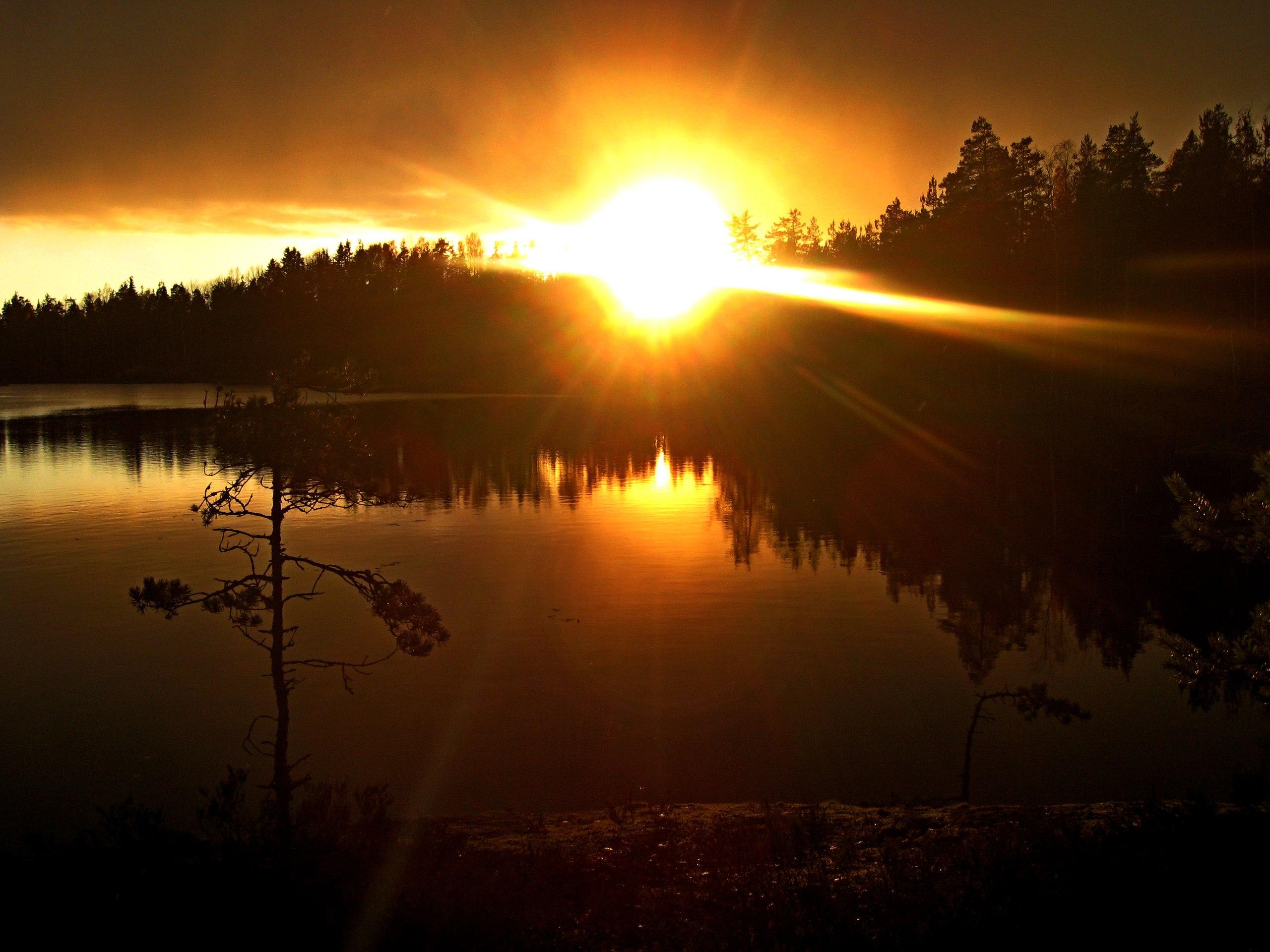 картинка солнечного вечера всё изменилось после