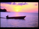 Aelita Lilo - Pleasure island