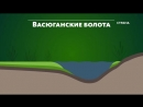 Васюганские болота Природа Телеканал Страна yklip scscscrp