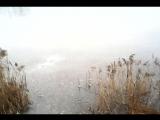 29 ноября. Карасёвое озеро у ЗЗГТ в Заволжье
