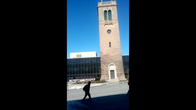 UW Bell Tower