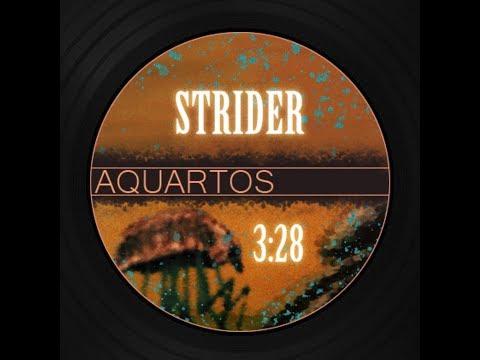 (Free Art House Cinematic Music) Aquartos - Strider | Contemplative Atmospheric Soundtrack